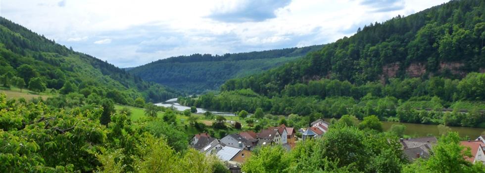 Ausblick-Ferienwohnung-Neckarblick-Neckartal-Odenwald-Eberbach