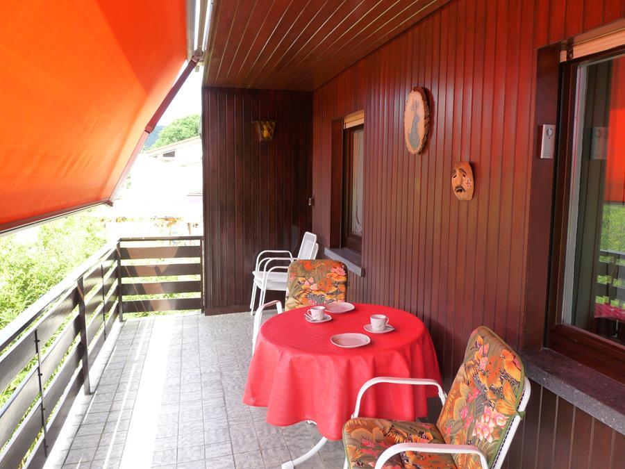 Dach-Ferienwohnung-Neckarblick-Neckartal-Odenwald-Eberbach